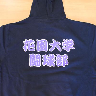 https://www.sportsteam-dream.jp/case/item/2010_11hanazono-rfc1.jpg