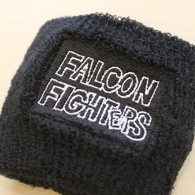 https://www.sportsteam-dream.jp/case/item/2011_01_falcon1.jpg