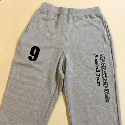 https://www.sportsteam-dream.jp/case/item/2011_12_junko1.jpg
