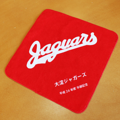 https://www.sportsteam-dream.jp/case/item/ooyodojaguars-01.jpg