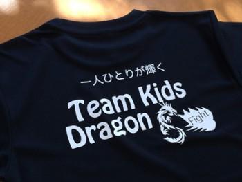 https://www.sportsteam-dream.jp/wp/wp-content/uploads/2016/02/tk0-wpcf_350x263.jpg