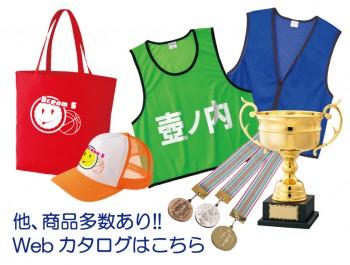 https://www.sportsteam-dream.jp/wp/wp-content/uploads/2016/09/catalog-ec-wpcf_350x265.jpg