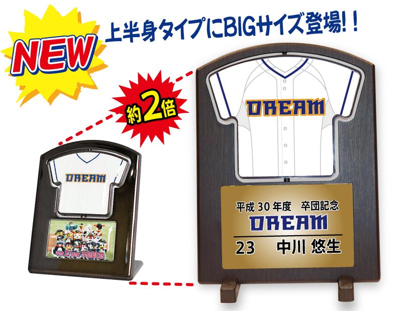 https://www.sportsteam-dream.jp/wp/wp-content/uploads/2018/10/standBIG-ec.jpg
