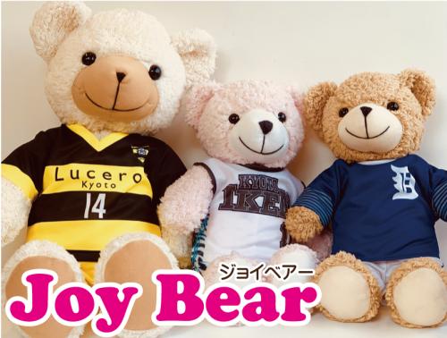 https://www.sportsteam-dream.jp/wp/wp-content/uploads/2019/07/2eea9e0e695a984ebd3c317037060215-wpcf_500x378.png