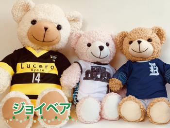 https://www.sportsteam-dream.jp/wp/wp-content/uploads/2019/11/2eea9e0e695a984ebd3c317037060215-wpcf_350x265.png