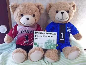 https://www.sportsteam-dream.jp/wp/wp-content/uploads/2020/09/joy-wpcf_350x263.jpg